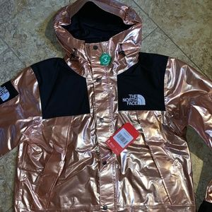 Supreme x The North Face Mountain Parka Rose Metal